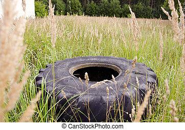 古い, tyre, 中に, ∥, 草