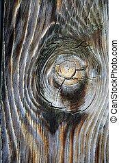 古代, 古い, 木製である, 木, ドア, 年を取った, 手ざわり