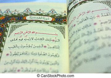 可蘭經, 選擇性, 頁, 集中