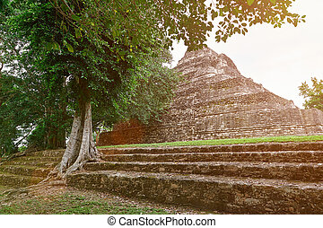 台なし, ピラミッド, maya