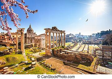 台なし, ローマ人, ローマ, フォーラム