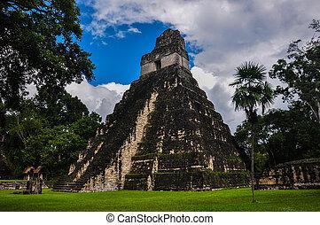 台なし, guatemala, ジャガー, tikal, 寺院