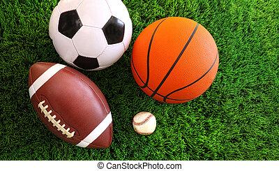各種組み合わせ, の, スポーツ, ボール, 上に, 草