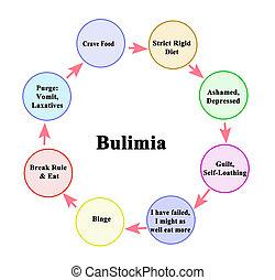 周期, bulimia, 8, コンポーネント
