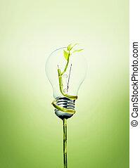 味方, 電球, 環境