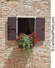 咲く, begonia, 箱, 窓, 赤