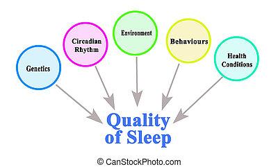 品質, 何か, 睡眠, 影響