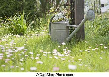 噴壺, 以及, 花園手套, 在, 春天, 花園