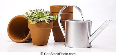 噴壺, 以及, 花園