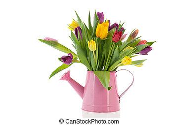 噴壺, 由于, 花束, 鬱金香