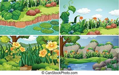 四朵花, 花園, 場景