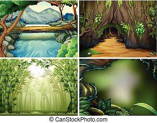 四, 不同, 森林, 場景