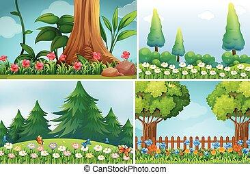 四, 場景, 背景, 花園