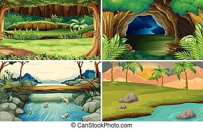 四, 森林, 場景, 樹, 河