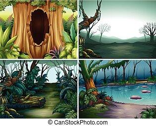 四, 河, 場景, 樹, 森林