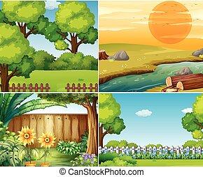四, 花園, 樹, 場景