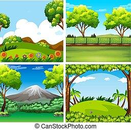 四, 領域, 背景, 場景, 樹