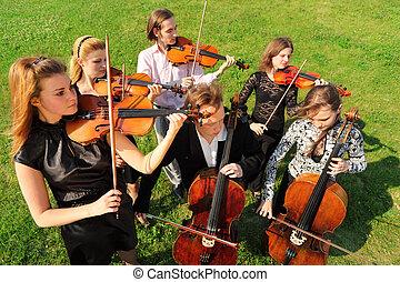 团体, 在中, 小提琴手, 玩, 站, 在上, 草