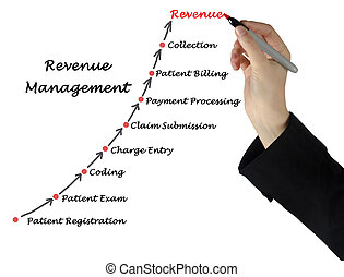 図, の, 収入, 管理