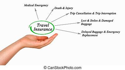 図, の, 旅行 保険