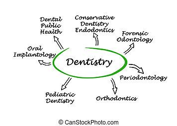 図, 歯科医術