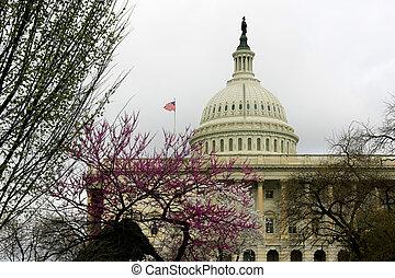 国会議事堂, 中に, 春