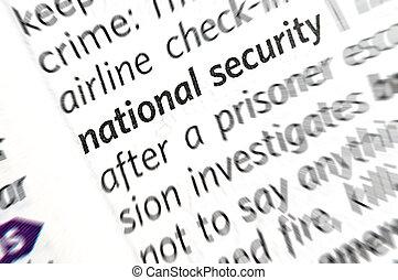 国家安全保障, 言葉