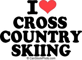 国, 愛, 交差点, スキー