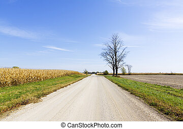 国, 砂利, -, 道, 緩い