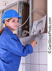 图形, 看, 电工, 女性