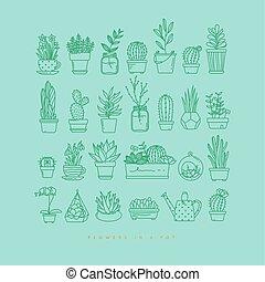 圖象, 植物, 在, 罐, 綠松石