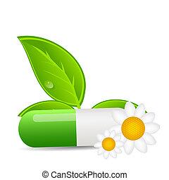 圖象, 環境, 插圖, 矢量, 背景, 草藥, 藥丸