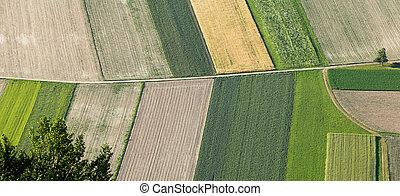 土地, の上, 耕された, sowed, 新たに, 農業