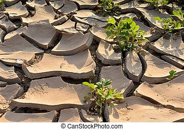土地, 干ばつ