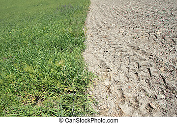 土地, 肥沃, 実を結ばない
