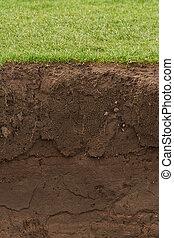 土壌, 上に, 草, さらされた, 刈り込まれた