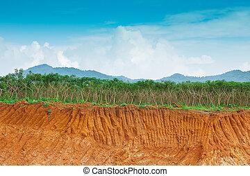 土壌, farm., 人間, 下に, カサバ, 浸食, 状態, 崖