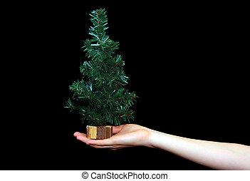 圣誕樹, 在, 手