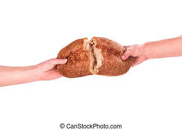在手里的面包