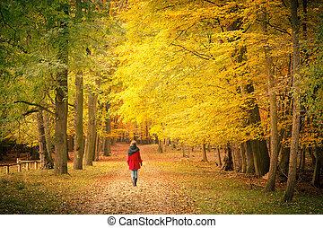 在, 秋天, 公園