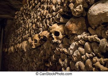 地下墓穴, 骨, 巴黎, 头骨