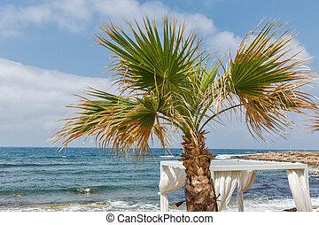 地中海, 手掌海灘, 由于, 亭子