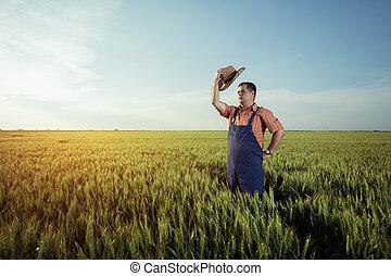 地位, フィールド, 小麦, 農夫