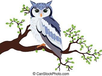 地位, フクロウ, 木の枝