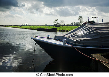 地位, 付けられる, 水, 海岸, ウィット, カバーされた, ボート