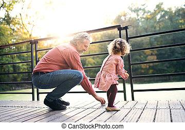 地位, 娘, walk., 父, 湖, 成長した, よちよち歩きの子
