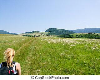 地位, 山, 女, 牧草地, 遠くに, 見る, ピークに達しなさい