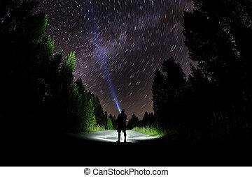 地位, 懐中電燈, 空, 暗い, 森林, 星, 夜, 人