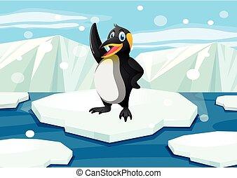 地位, 氷山, ペンギン