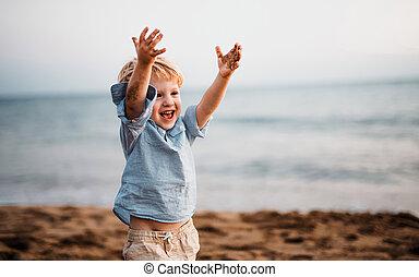 地位, 男の子, よちよち歩きの子, 夏季休暇, 小さい, fun., 浜, 持つこと
